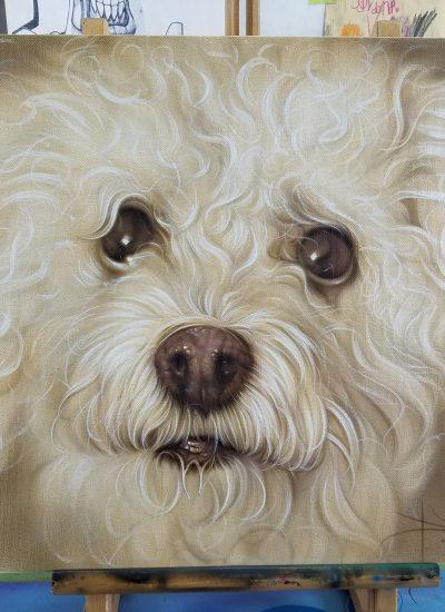 12. Tribute Dog portraits on canvas