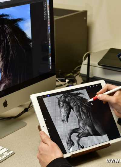 24. Digital art and Procreate