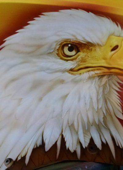 37. Eagle on panel