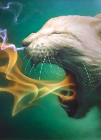 5. Cat breathing fire