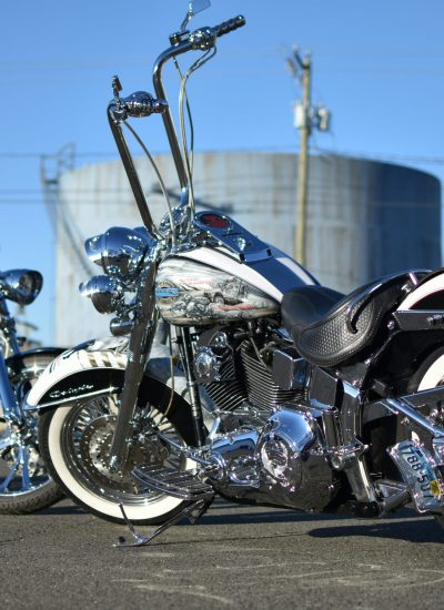 7. Painted Harleys